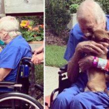Cãozinho pede ajuda e consegue salva a vida do seu dono. O reencontro deles é emocionante