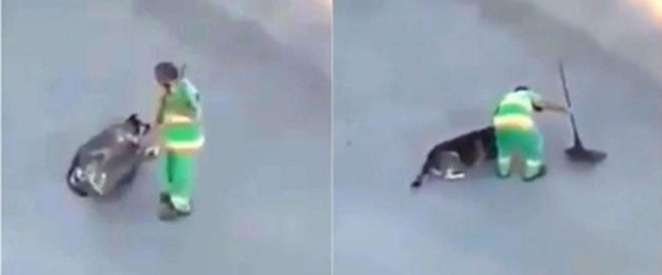 Gari faz carinho em um cachorro de rua com vassoura e ele amou