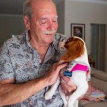 Homem que salvou seu cachorro de crocodilo compartilha atualizações sobre a recuperação do cão