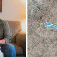 Homem usa drone para resgatar cachorro perdido por 10 dias na floresta