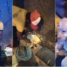 Um jovem morador de rua abre mão da marmita  ganhada para alimentar cachorro que resgatou