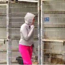 Essa mulher não conseguia decidir qual cachorro adotar, então ela comprou o abrigo inteiro