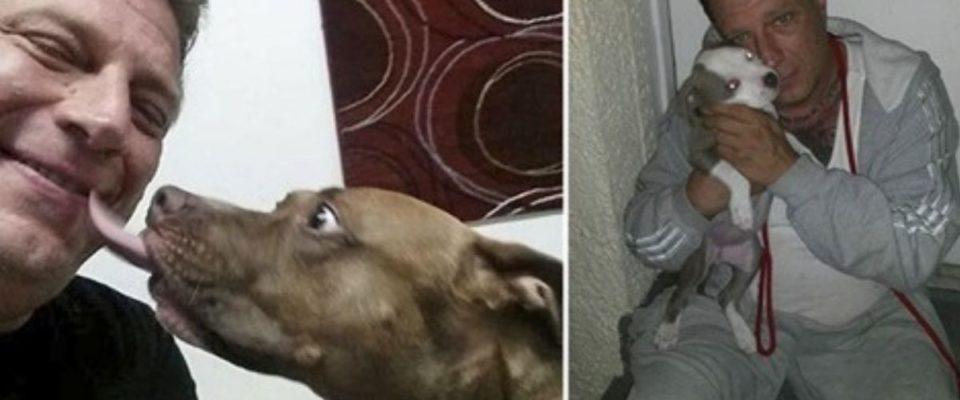 Ex-mafioso tem vida mudada depois de encontrar com cão de rua e se torna voluntário de abrigo