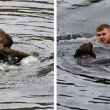 Homem pula em água gelada para resgatar cachorro que estava preso em uma corda