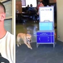 Soldado aguarda ansioso por avião com o cachorro com quem ele serviu