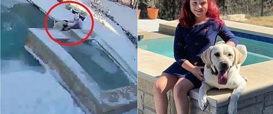 Câmera filma garotinha de 8 anos salvando seu cachorro que caiu em piscina gelada
