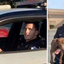 Policial vê cão sendo estrangulado pelo dono – prende o dono e leva o cachorro para casa