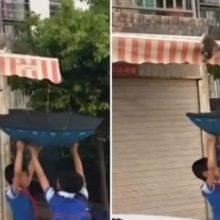 Dois garotinhos usam um guarda-chuva para salvar um gatinho preso em um toldo