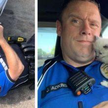 Gatinhos não conseguem parar de acariciar o policial que salvou suas vidas