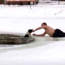 Homem arrisca a vida para salvar cachorro se afogando em lagoa congelada