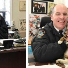 Policiais convencem o chefe a adotar um gatinho perdido como animal de estimação