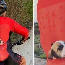 Ciclista encontra cãozinho abandonado na estrada, leva para casa no bolso e sua vida muda para sempre