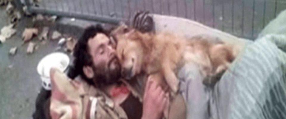 Este morador de rua dorme com seu cachorro nos braços, um anjo de quatro patas que nunca o decepciona