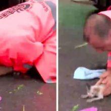 Homem herói traz o gatinho que se afoga de volta à vida e o adota