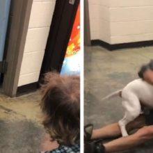 Morador de rua se reencontra com seu cachorro perdido em um vídeo emocionante