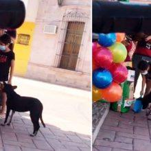 Uma garota secretamente pega ração para dar a um cachorro de rua