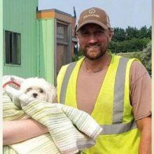 Motorista de caminhão de lixo encontra cachorrinho na coleta de lixo e salva a vida dele