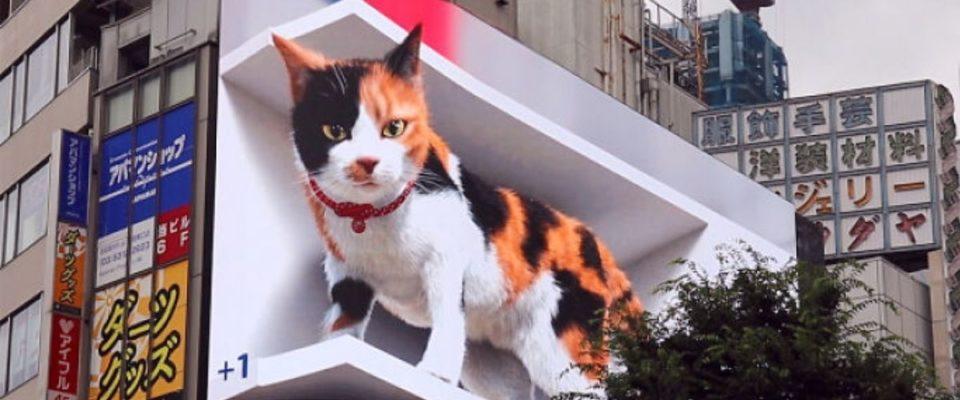 Outdoor gigante hiper-realista em 3D exibe Gato em Tóquio e hipnotiza as pessoas