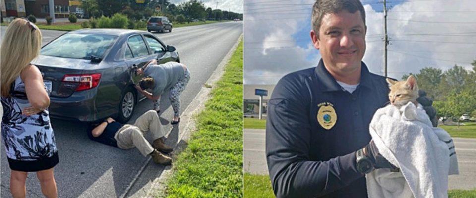 Sargento e capitão da polícia salvam gatinho preso em roda de carro
