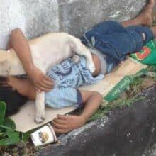 Menino abandonado encontra conforto e amizade em um cachorro que o protege