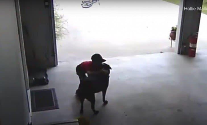 Menino entra na garagem dos vizinhos 2