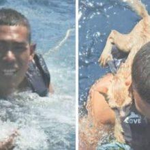 Oficial da marinha pula na água para resgatar 4 gatos de um navio que estava afundando