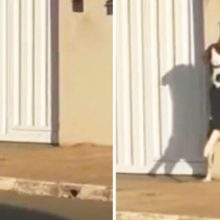 Vizinhos gravaram cão arteiro que tocou a campainha da sua casa para alguém abrir o portão