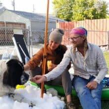 Centro de Gelo faz neve para Cão em estado terminal pois ele ama o frio