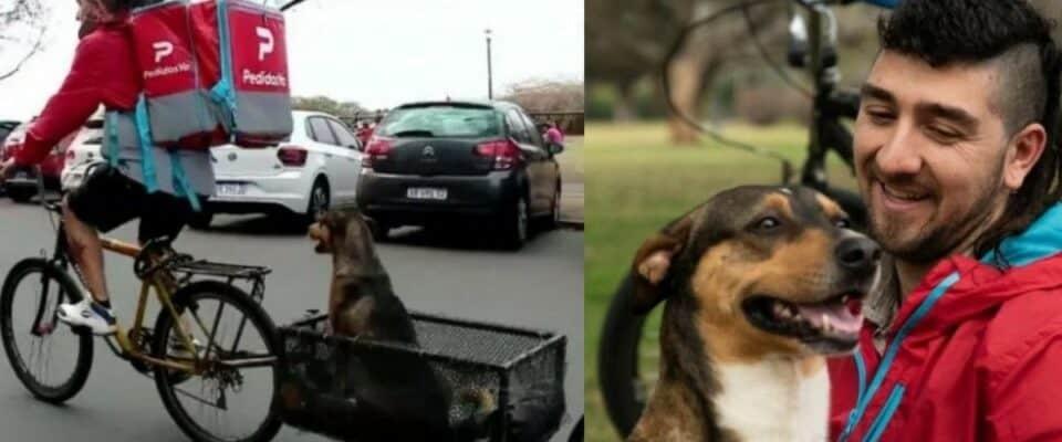 Entregador modifica sua bicicleta para sempre carregar o cachorro que salvou da rua