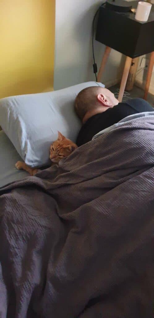 Gato entra na casa de seus vizinhos 5