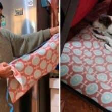 Vovô ama tanto o seu cão que ele fez um suéter para ele não passar frio
