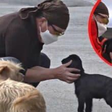 Cabrinha foi rejeitada por sua mãe é adotado por cães de uma família