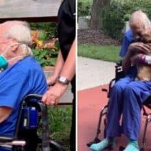 Cão se reúne com seu tutor depois que ela correu para salvar sua vida