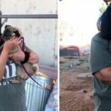 Depois de 6 anos o cão perdido viaja 2 mil km para se reunir com seu tutor