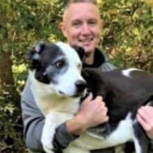 Drone encontra cão desaparecido que estava preso em um pântano