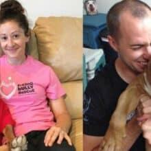 Um cão não parou de sorrir desde que foi adotado